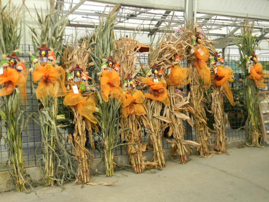 Corn Stalk Decoration Home Decorating Ideas & Corn Stalks Decoration - Home Decorating Ideas